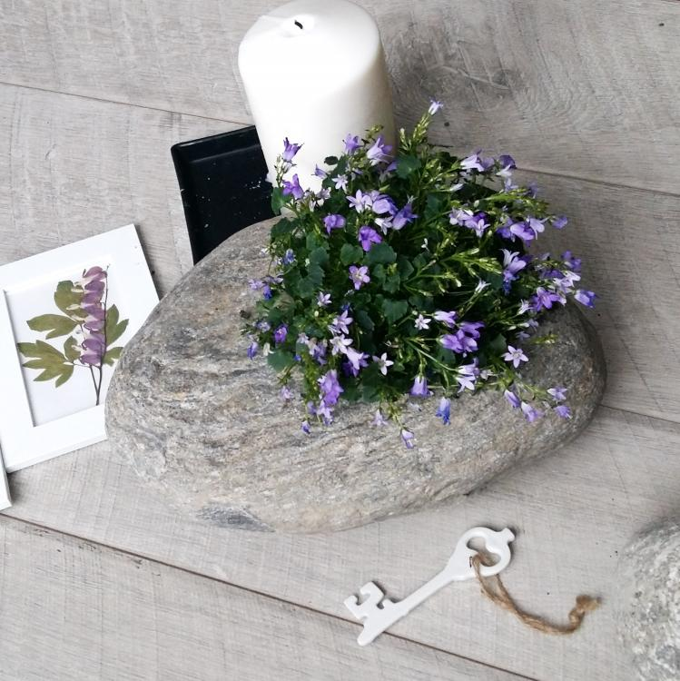 кашпо с отверстие и цветы.jpg