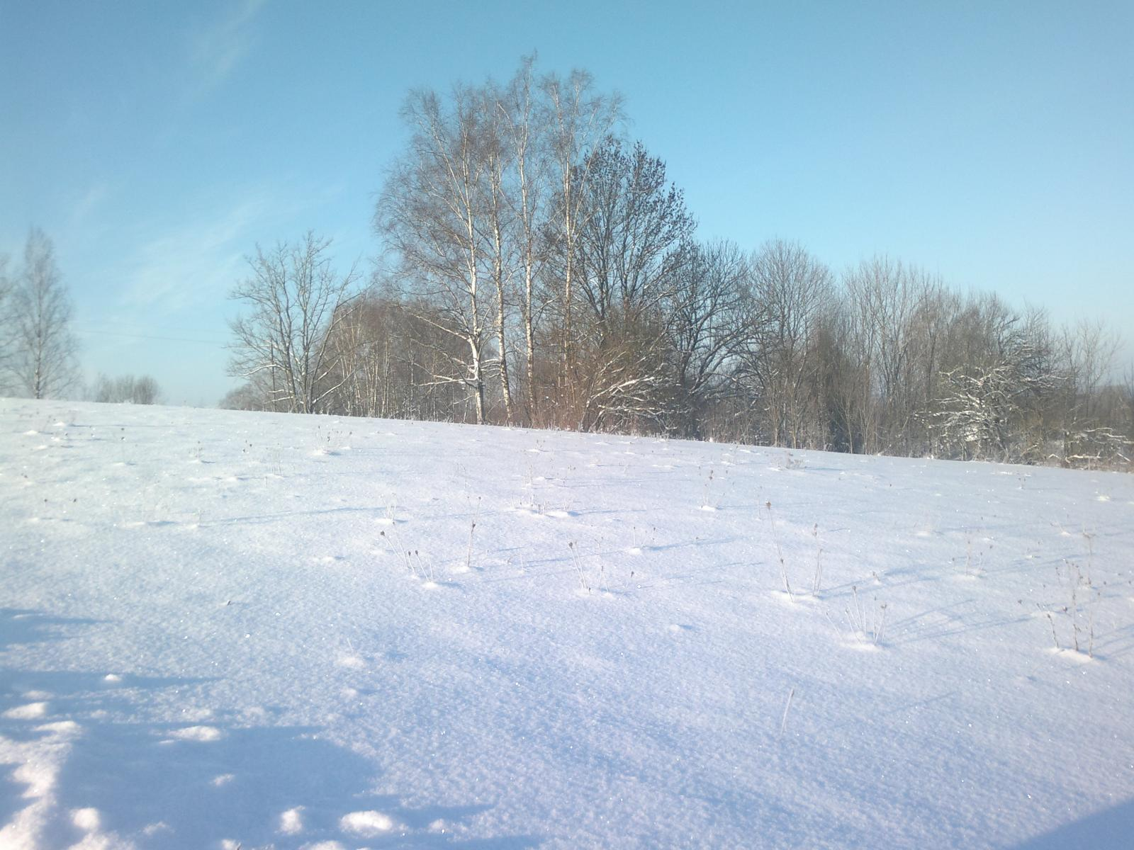 Янв.18 Зимний пейзаж)