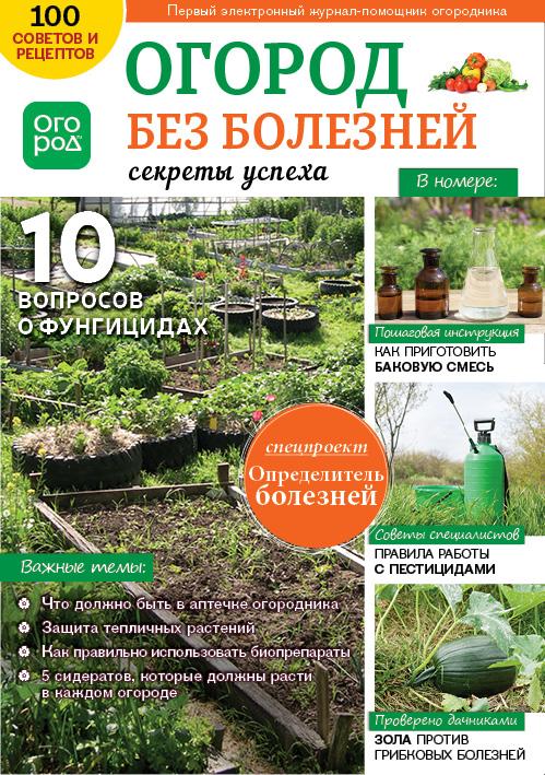 Огород без болезней - секреты успеха