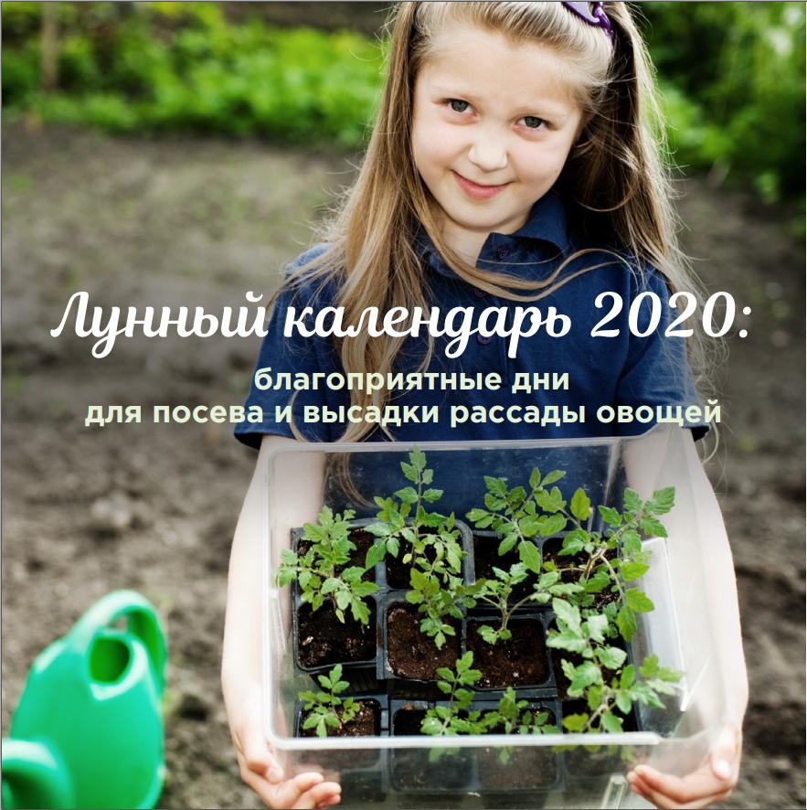 Лунный календарь 2020