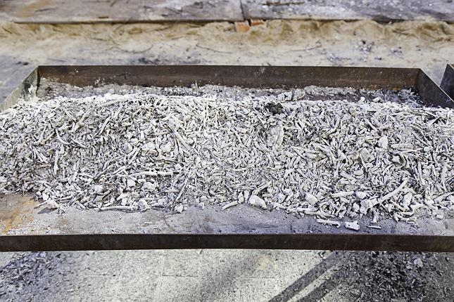 древесная зола фото