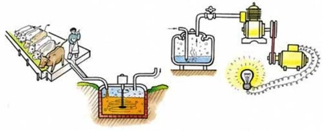 Биогаза в домашних условиях видео