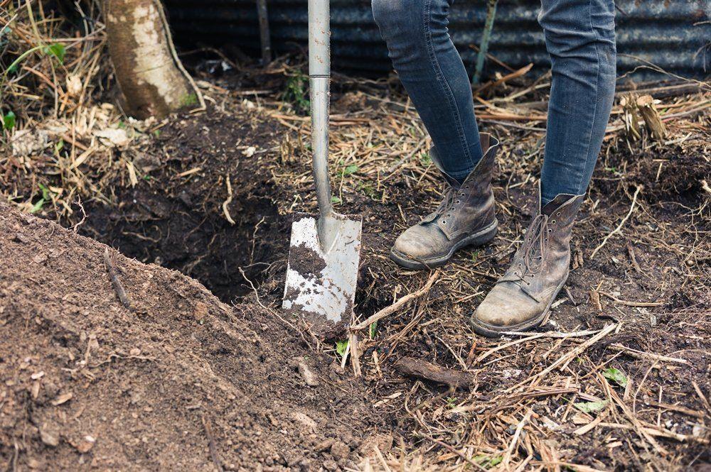 посадочные ямы копать