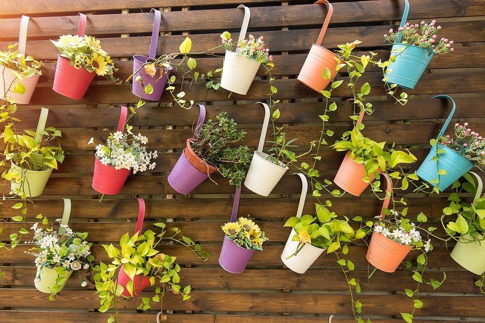 Контейнеры для цветов