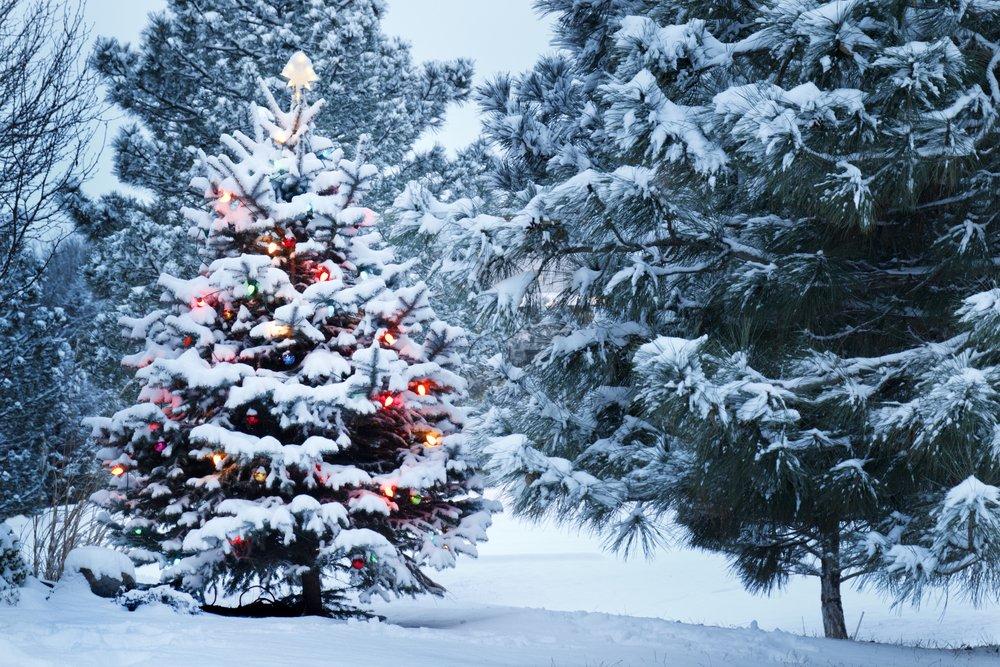 Погода в декабре