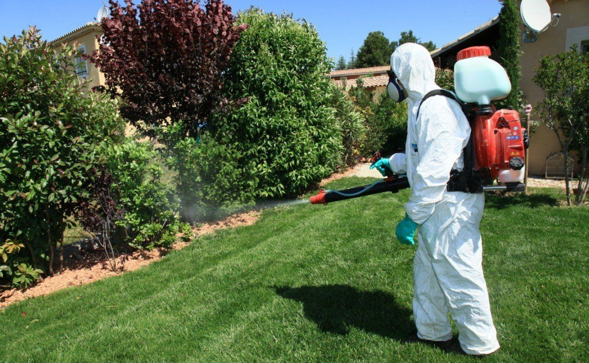 Опрыскивание против насекомых