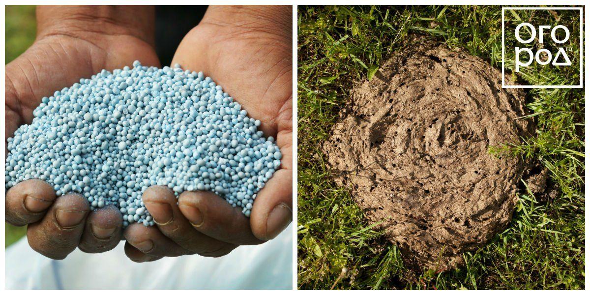 Коллаж - минеральные и органические удобрения