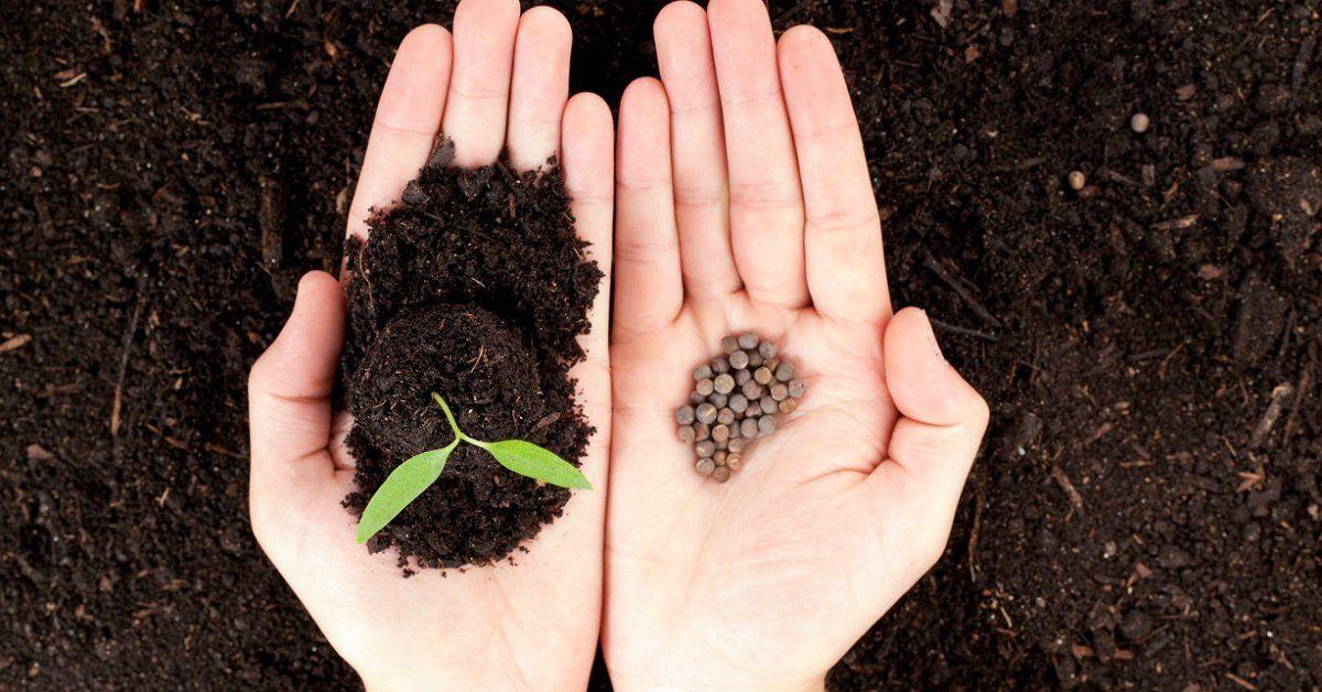 Как быстро посеять семена и рассаду на грядках!