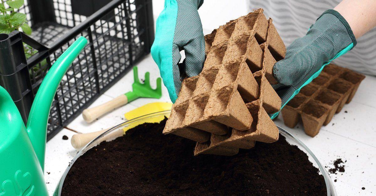 Каким должен быть идеальный грунт для рассады. Изучаем этикетки || Состав универсального грунта для растений