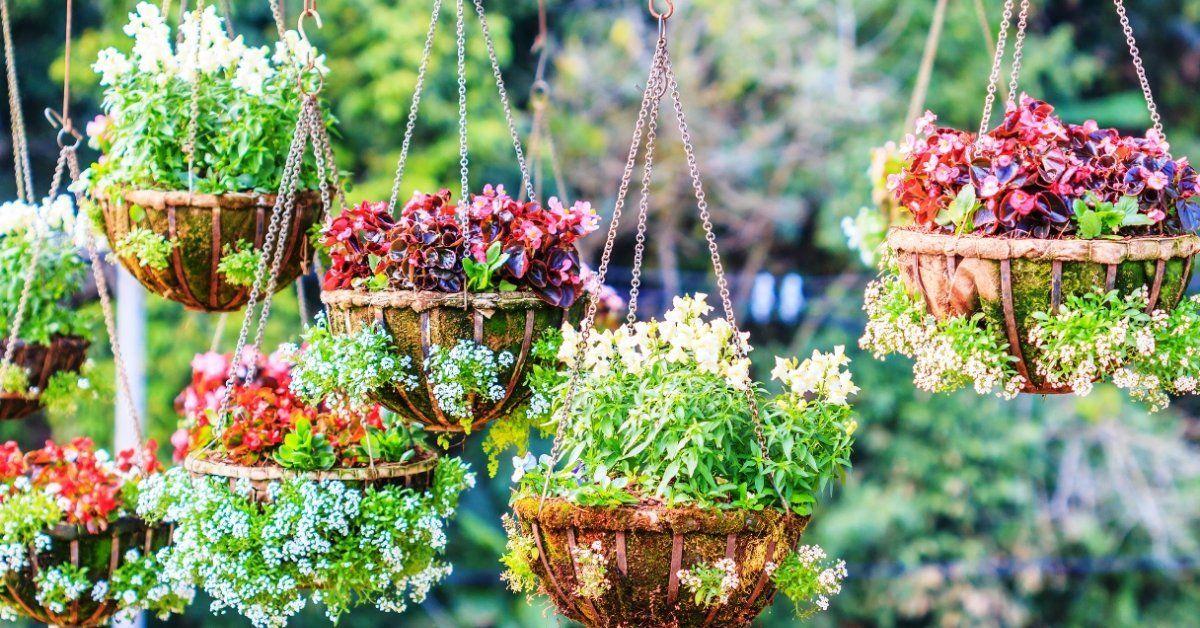 Кашпо для цветов своими руками: украшение цветочной зоны