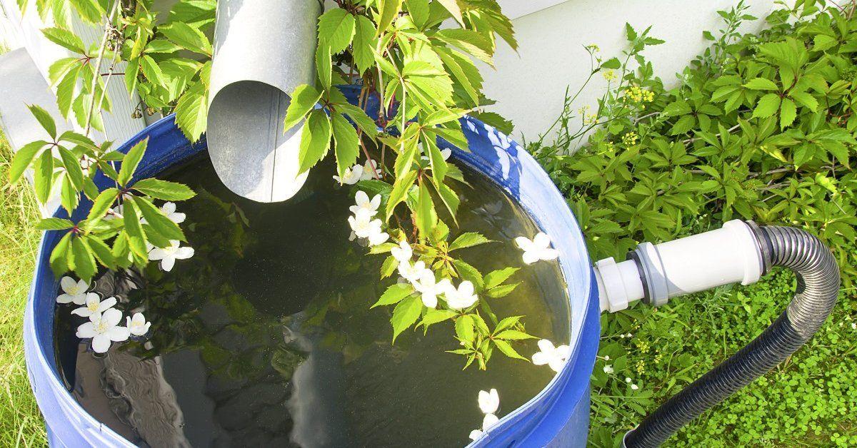 Система сбора дождевой воды с крыши