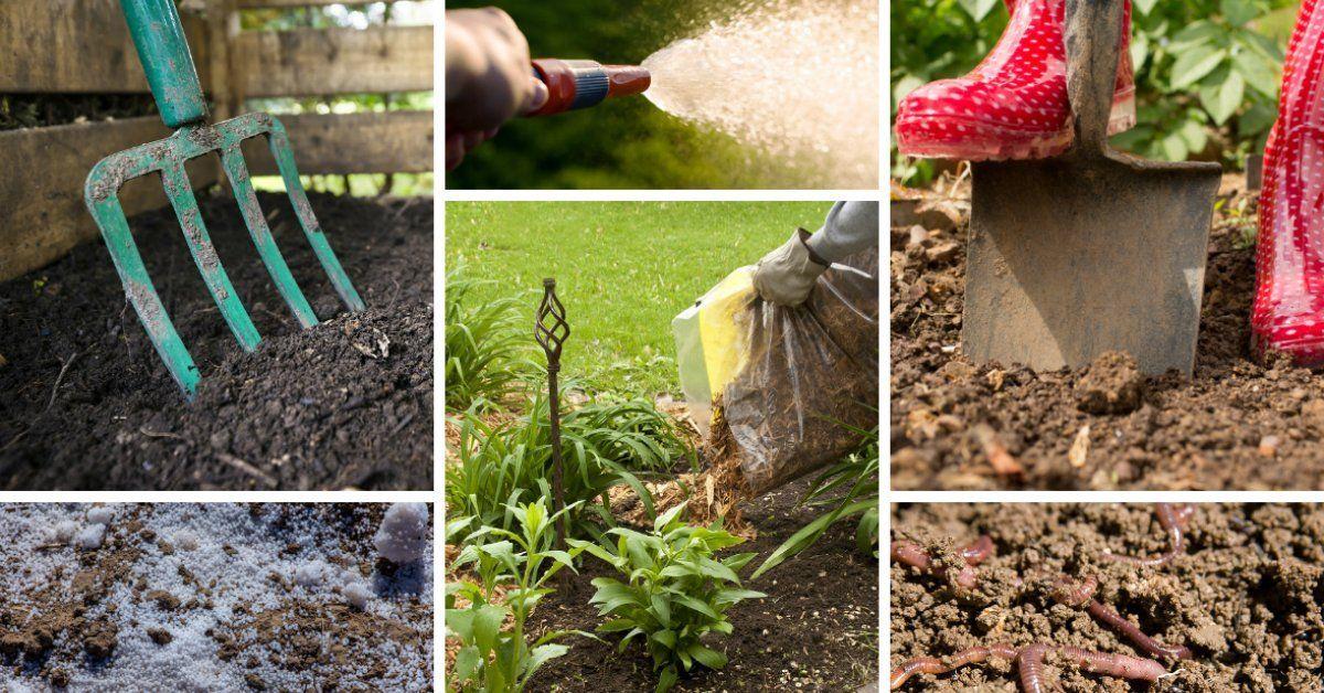 Что нужно делать чтобы сохранить плодородие почв