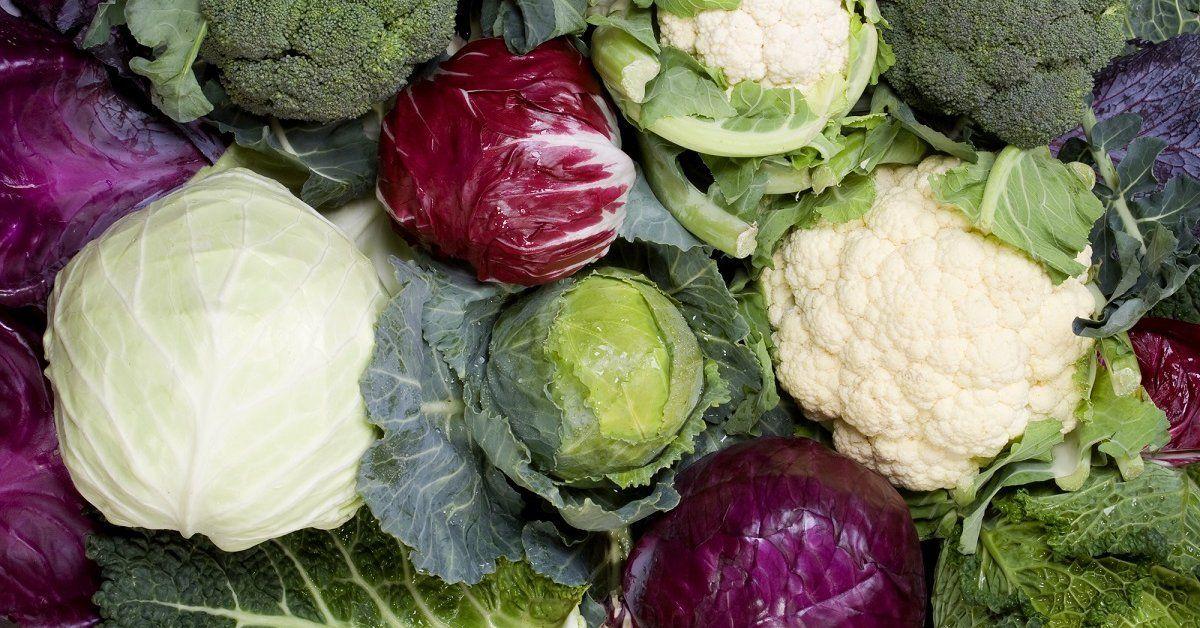 Как сохранить капусту свежей до весны: 10 способов