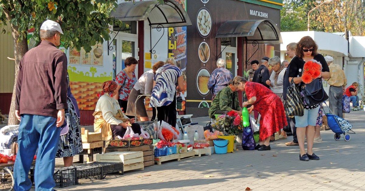 Дачный закон: Россиянам запретят продавать продукцию со своего огорода