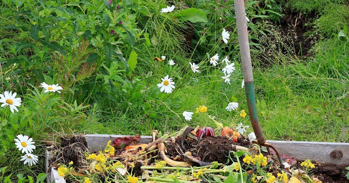 Теплые грядки своими руками: идеи, правила, полезные советы || Как сделать компостную грядку осенью