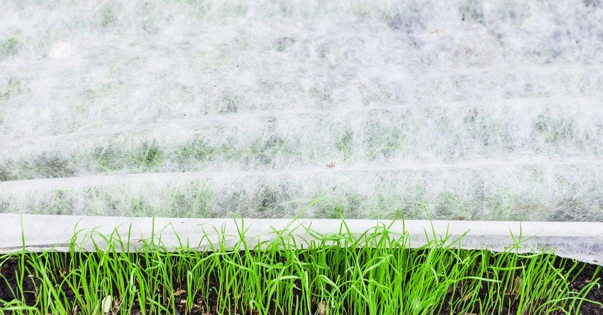 Укрывной материал нетканые материалы для деревьев и других растений Какой стороной вверх стелить Белый укрывной материал и других цветов для огорода