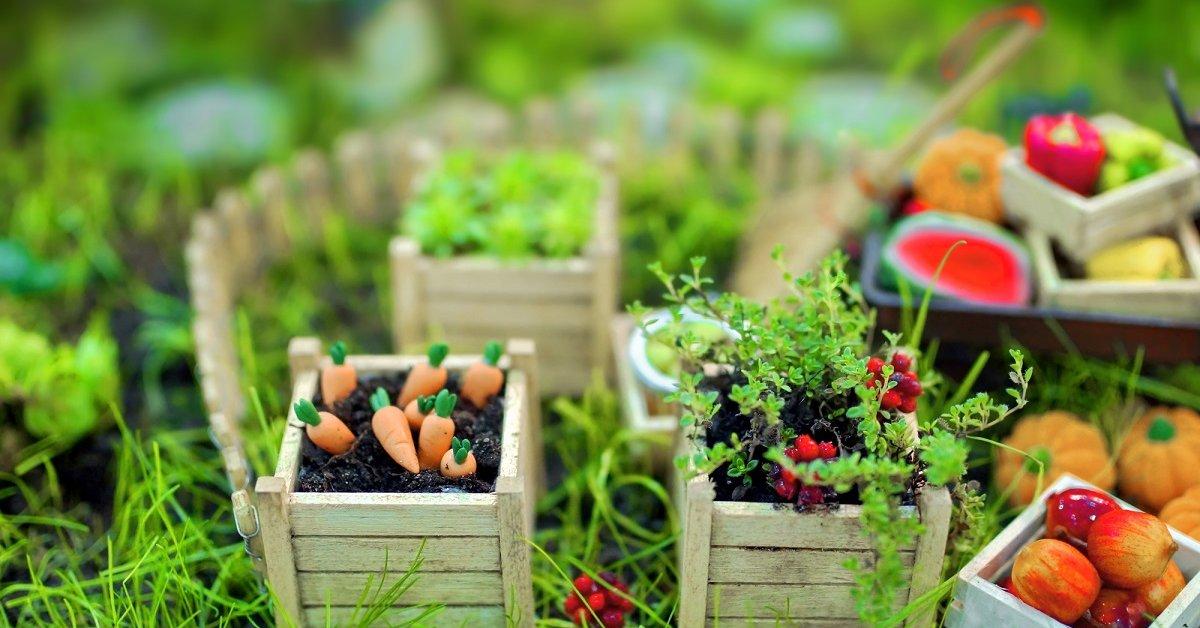 Овощи большие и маленькие