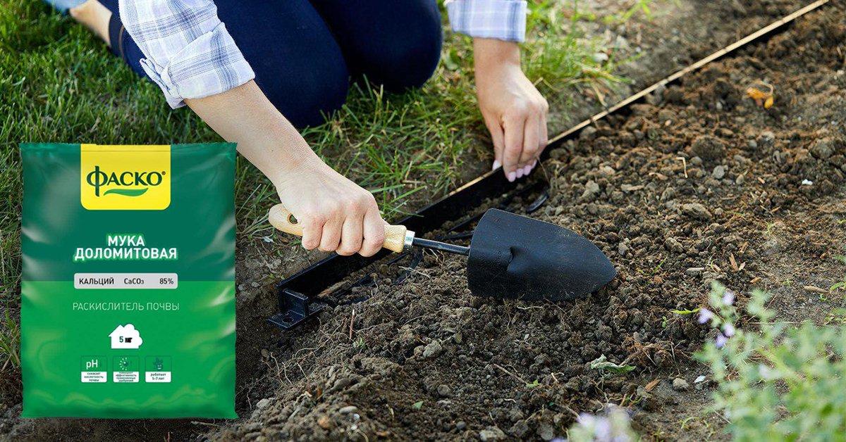 Когда лучше вносить доломитовую муку в почву