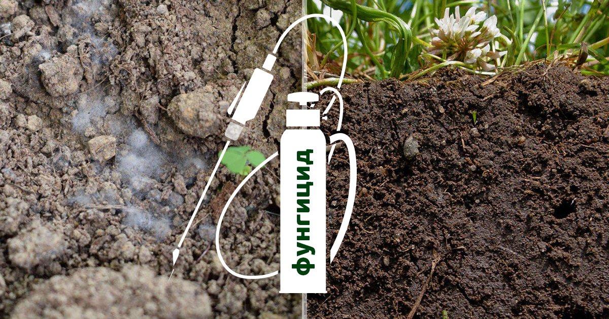 Как обработать почву осенью от вредителей