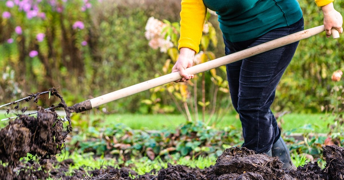 Удобрения для земли под зиму
