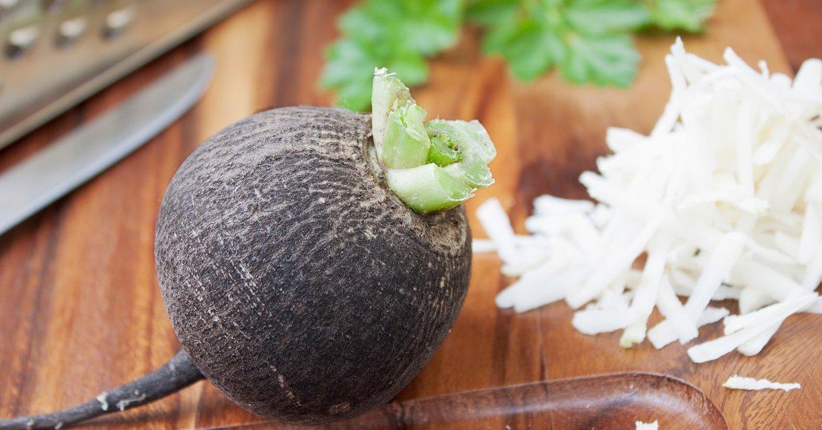 Что можно приготовить из черной редьки: 5 вкусных и полезных блюд