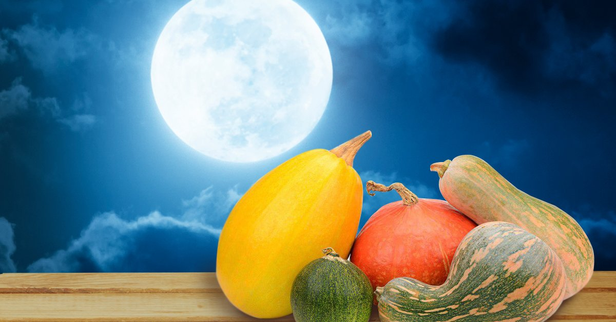 Когда собирать урожай по лунному календарю