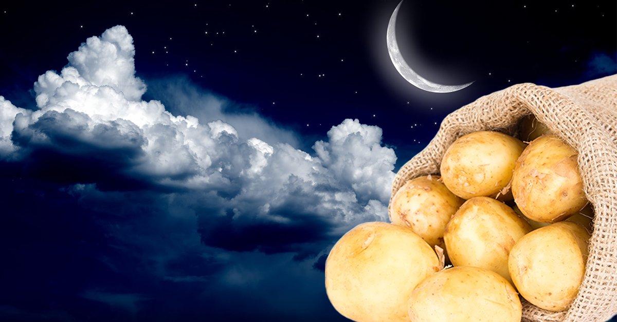 Благоприятное время для посадки картошки как лунный календарь влияет на всхожесть и будущий урожай