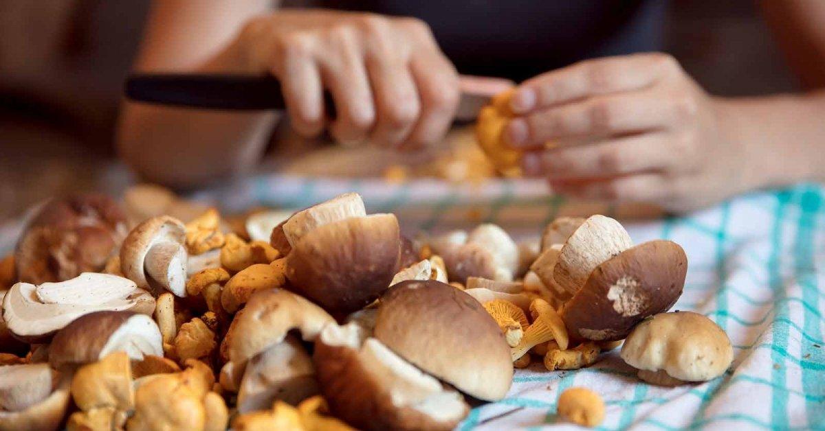 Как варятся грибы