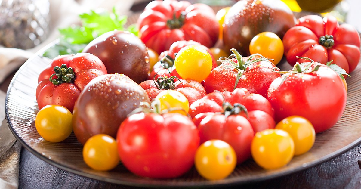Обзор новинок: сорта и гибриды томатов сезона 2019