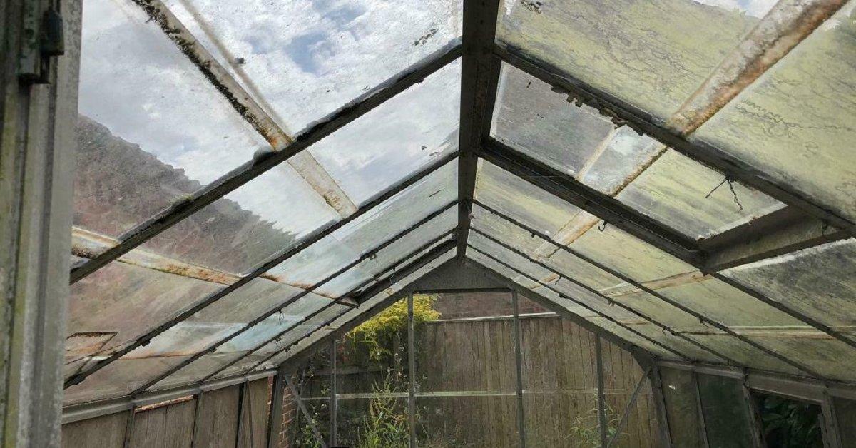 Открываем дачный сезон: как избавиться от плесени и грибка в доме после зимы