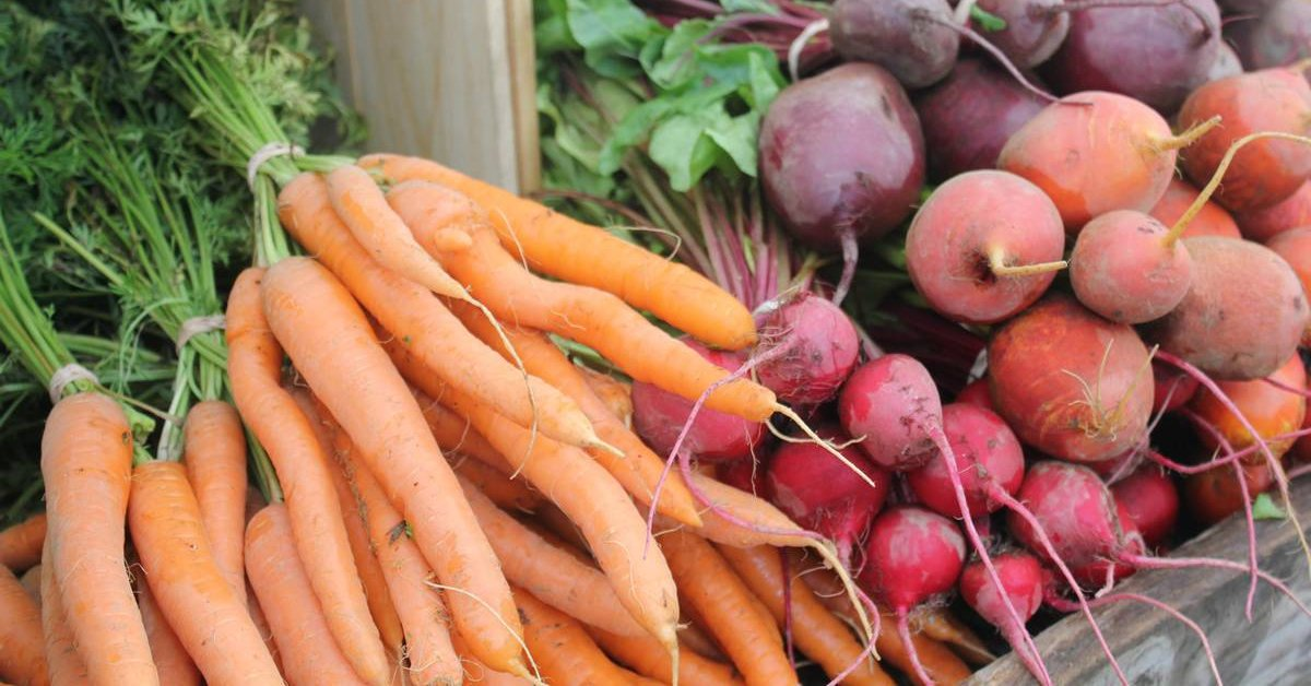 Как хранить морковь зимой в погребе