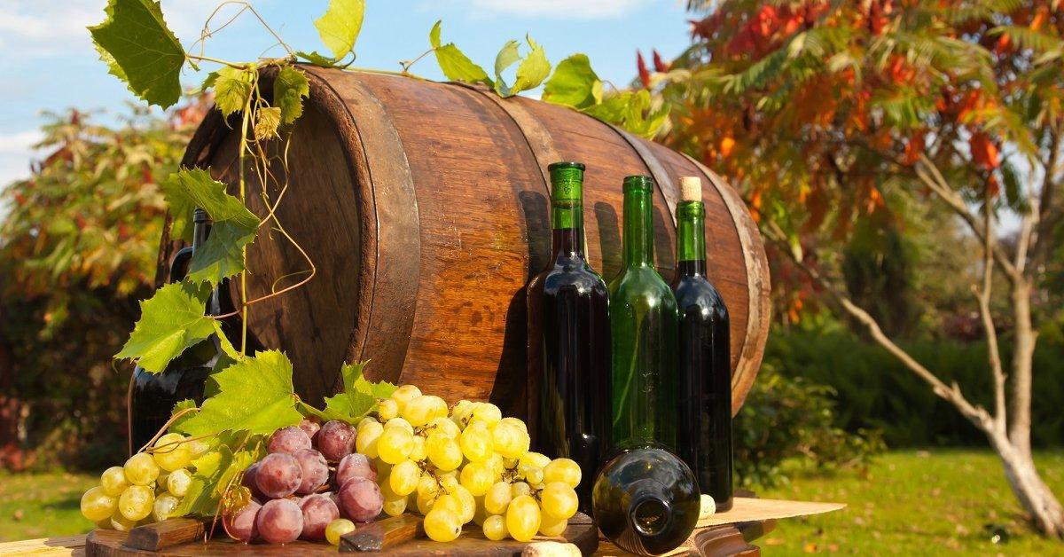 Как делать домашнее вино из зеленого винограда