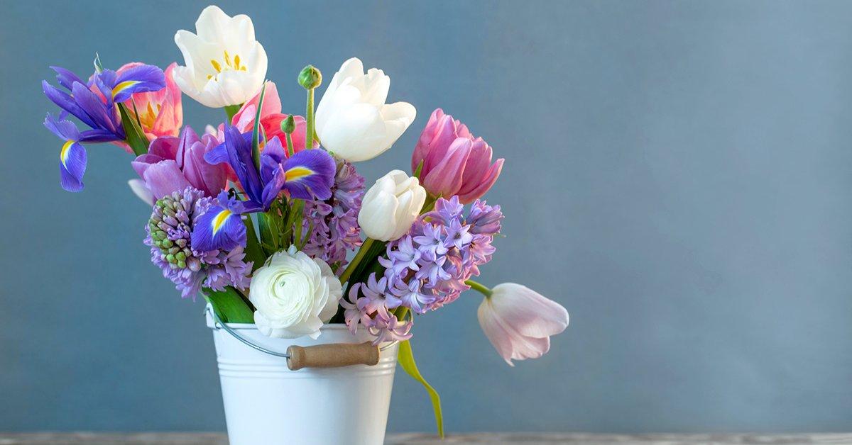 Живые цветы надолго