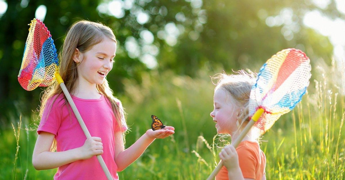 Букашки городская гусеница и полевые бабочки