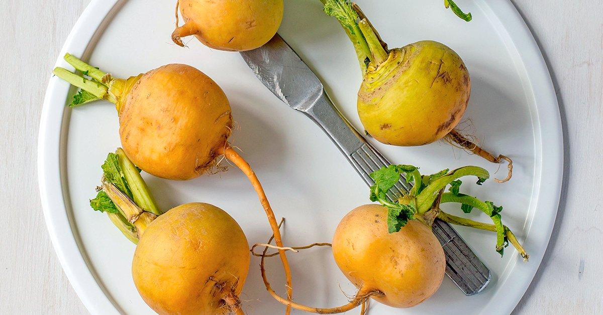 Блюда из репы. Рецепты быстро и вкусно, полезные и простые