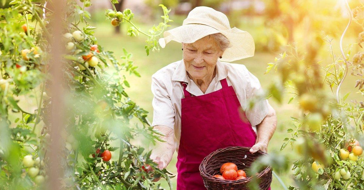 Налог на землю пенсионерам в 2018 году