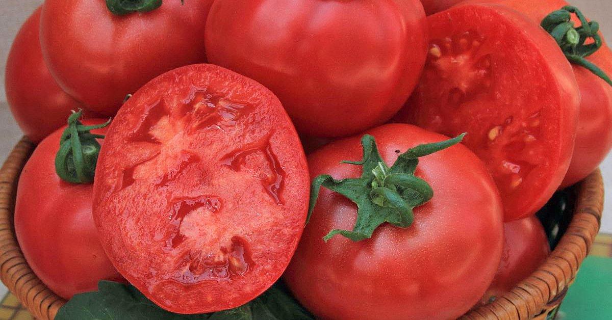 Самые вкусные сорта томатов