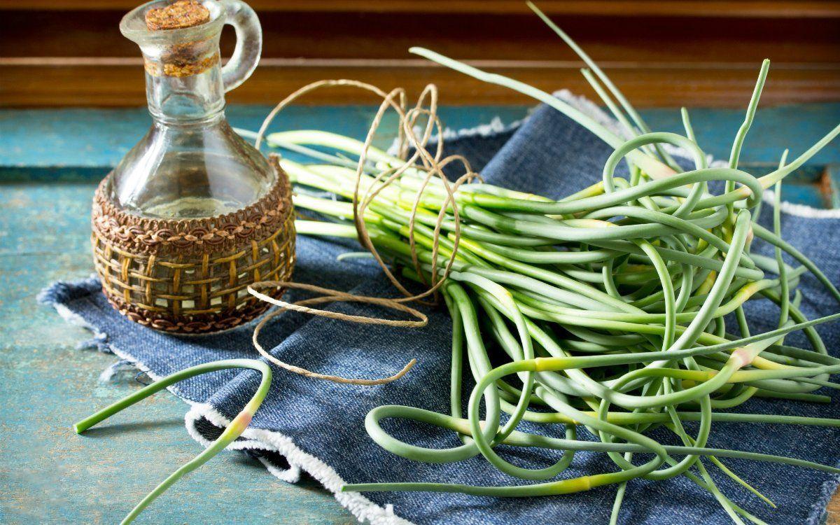 вкусные рецепты салатов заготовок из огурцов