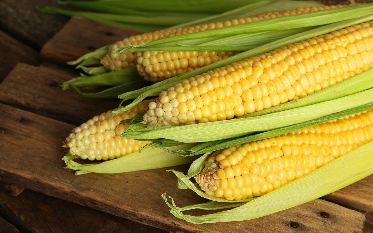 : Початки кукурузы