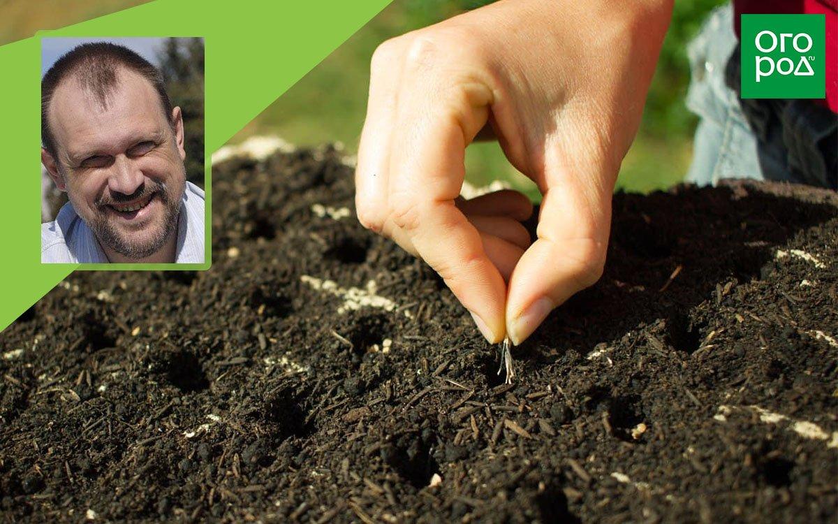 константин шилин выращивание рассады из семян