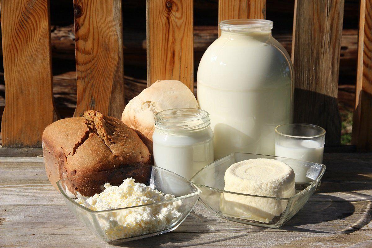 Деревенская еда - молоко, хлеб, сыр, творог