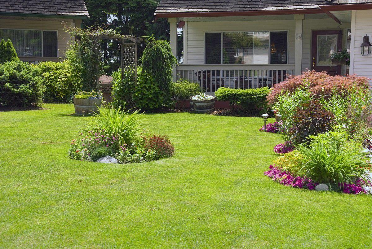 Зеленая лужайка у дома