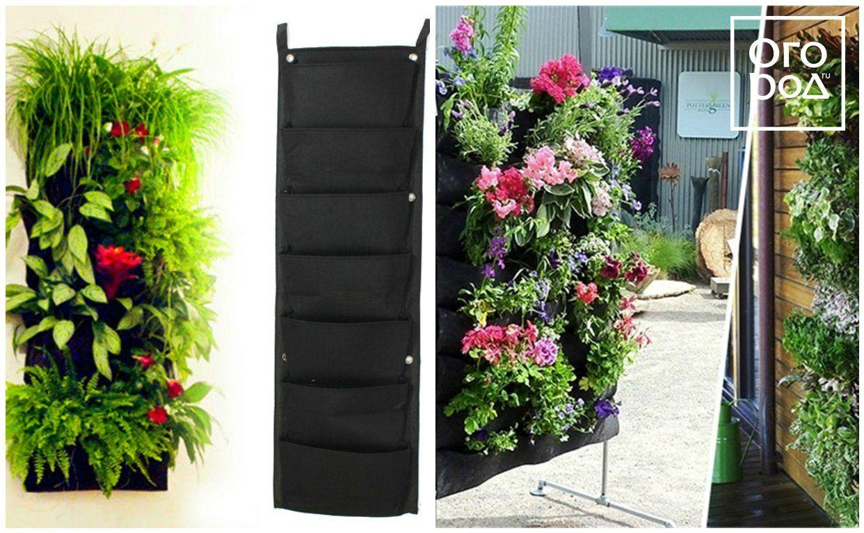 вертикальное озеленение, кашпо, цветы