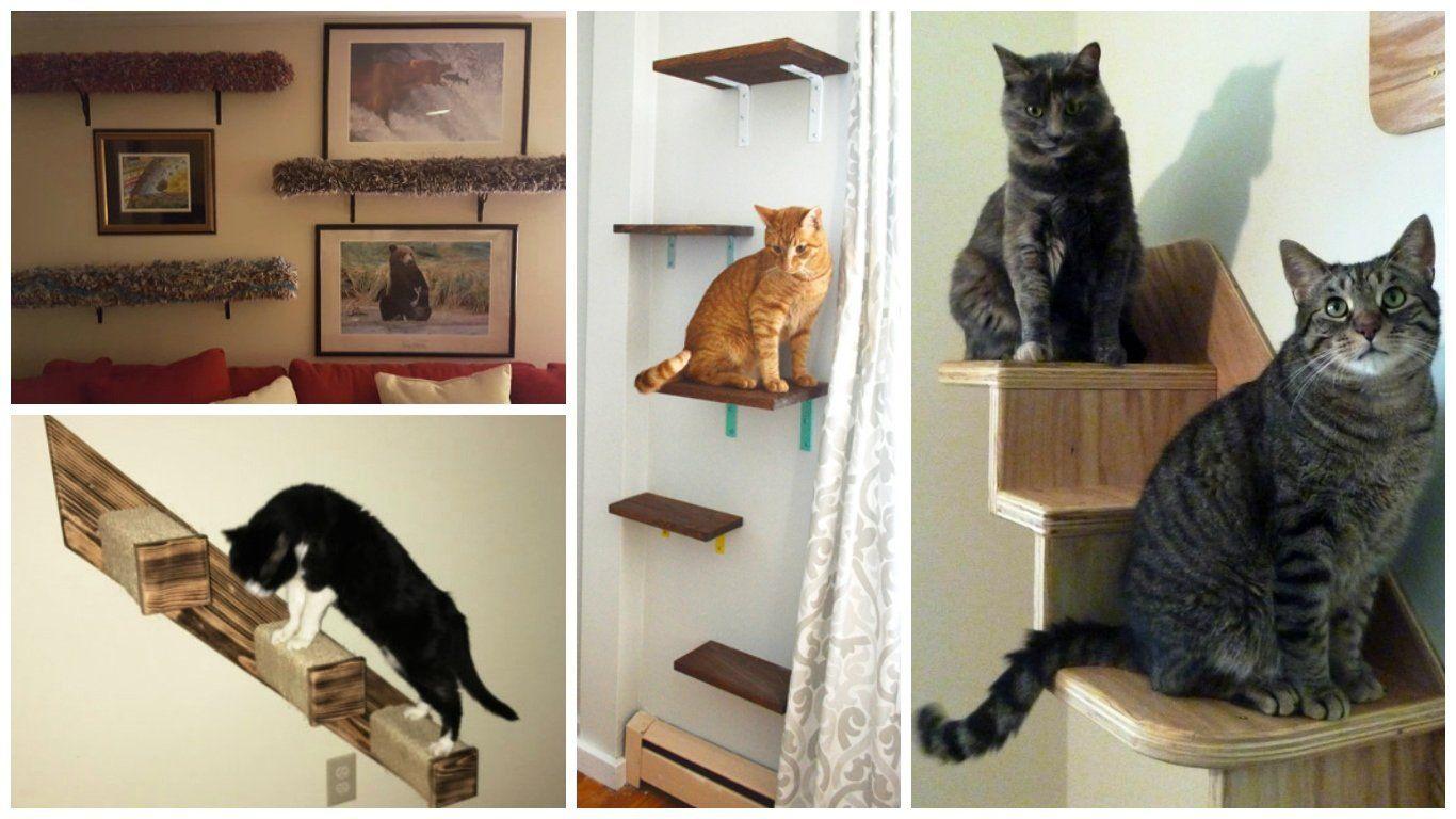 Домашний домик для кошек сделать своими руками фото 522
