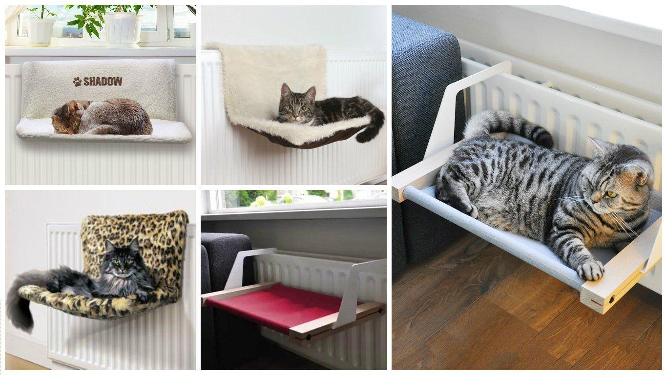 Как сделать лежанку для кота : кроватки, подстилки из подручных 23