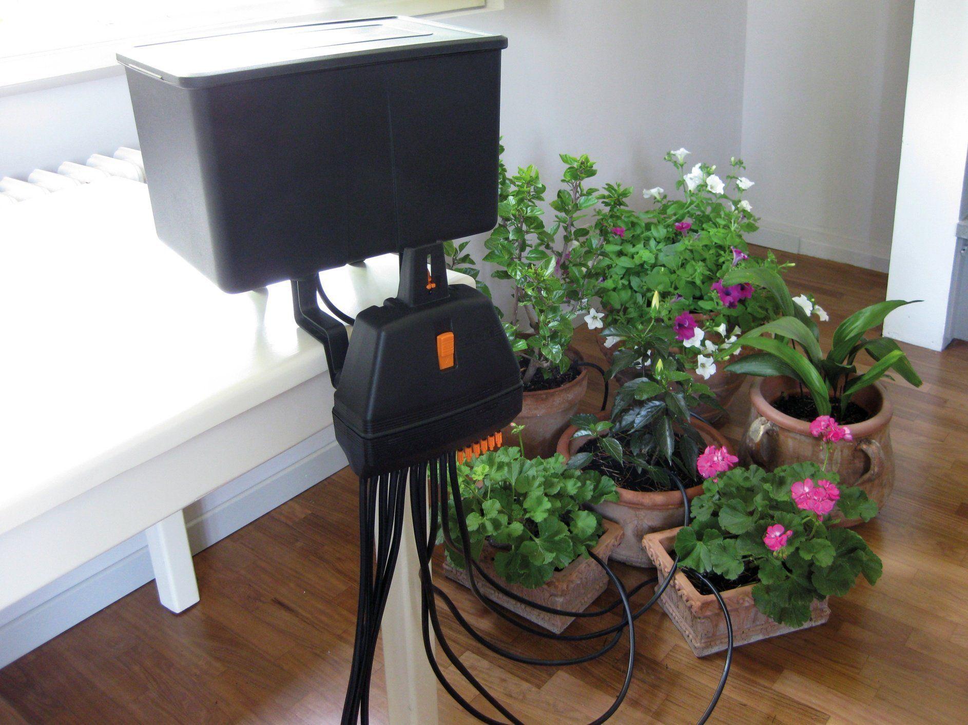 Капельный полив домашних растений