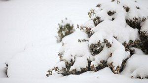 Окучивание снегом