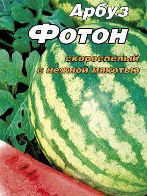 Семена арбуза сорта Фотон
