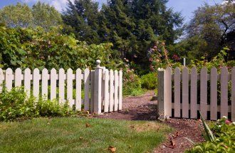White picket fence and gate frame the entrance to a kitchen garden overflowing with produce
