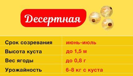 Смородина Десертная
